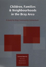 T 2008 Bray Well-being Study